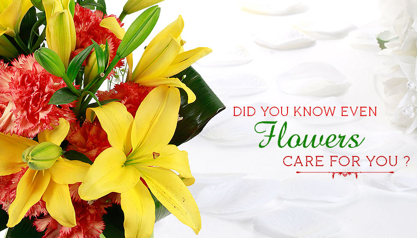 Flowers care for you, Flowers and their health benefits
