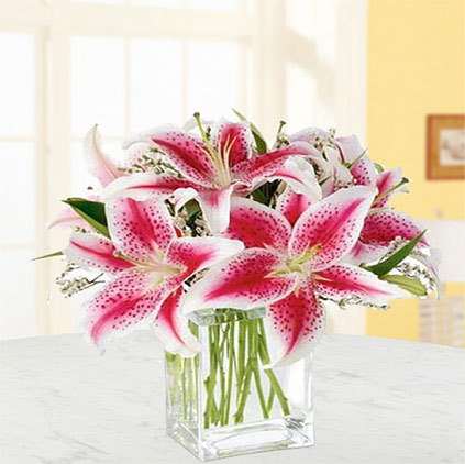 Lily flowers uses and health benefits