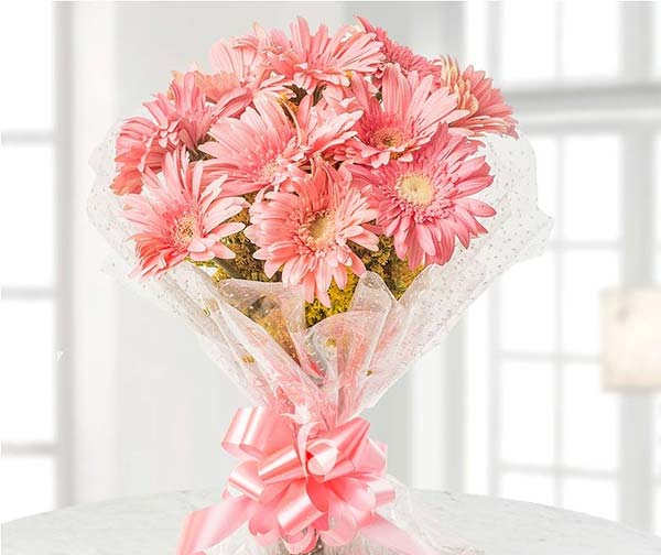 Gerberas - Gift Gerberas in Spring that symbolizes cheerfulness, happiness, and innocence