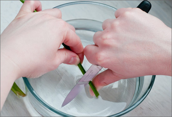 Cutting flower stems underwater to make flower long lasting