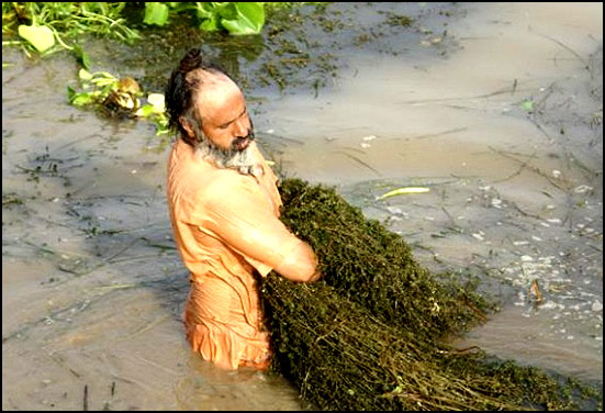 Eco Baba (Sant Balbir Singh Seechewal) cleaning river : A remarkable environmentalist