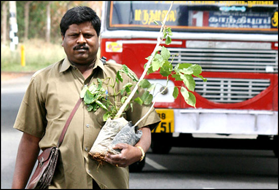 Yoganathan - A conducter in Coimbatore transport corporation while Planting tree