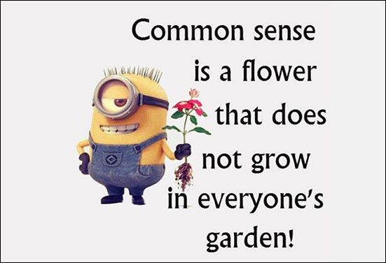 A philosophical friend minion - One who has answer for everything