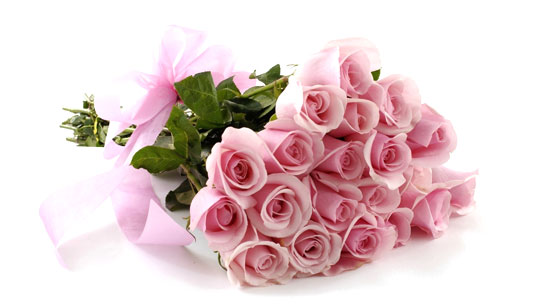7 Stages of Love with Roses – Stage 3 – Attraction – Pink Roses