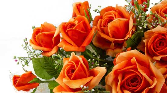 7 Stages of Love with Roses – Stage 6 – Reaffirmation – Orange Roses