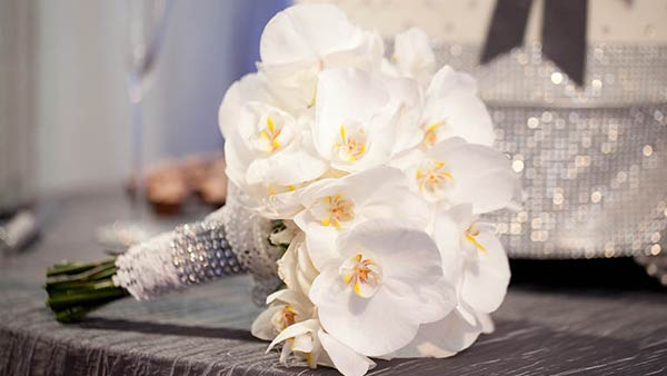 White Orchid Flower Meaning