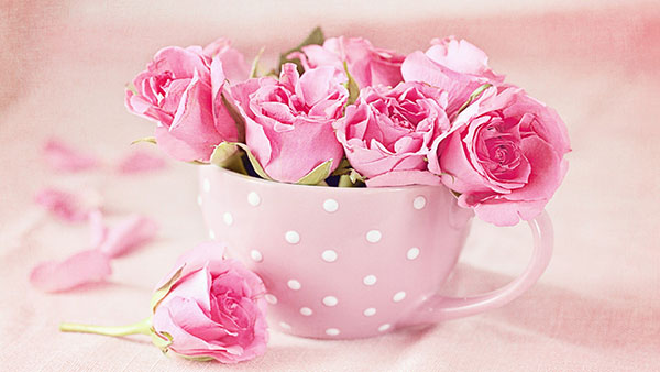 What Pink color of rose means