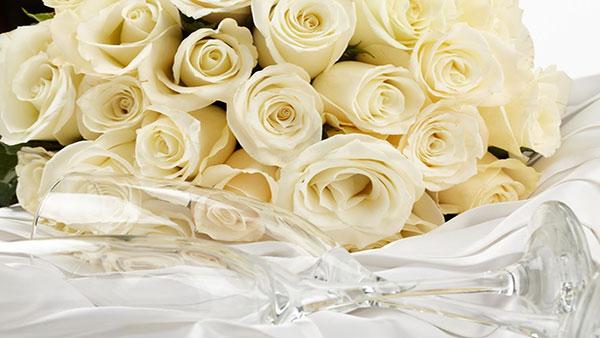 What White color of rose means
