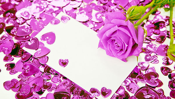What Lavender color of rose means