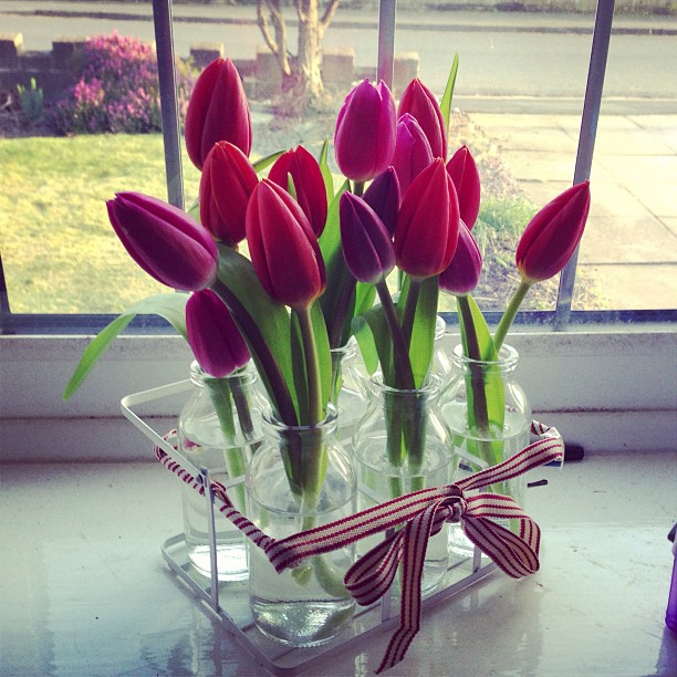 Beautiful red tulips in glass bottles