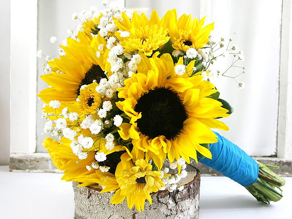 Sunflowers for the friends