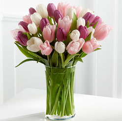 Bouquet of Tulips - Perfect flower for Zodiac sign Aries